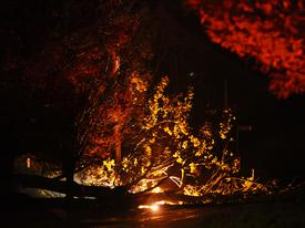 A large tree fell on Devon Blvd. bringing power lines down that started a small fire near the old Waterloo Gardens property in Devon.
