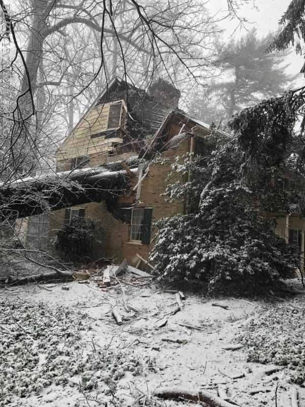 Firefighters responded to this tree that fell into a house in the 300 block of Keller Road in Tredyffrin Township around 12 Noon today. Thankfully the residents at home escaped injury.